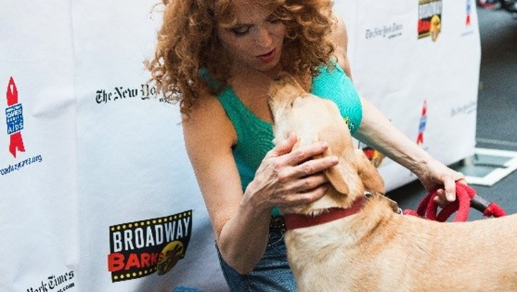 Pets Steal The Show At The 20th Annual Broadway Barks