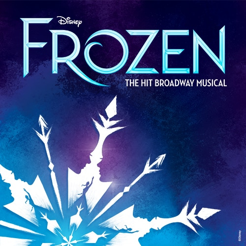 Frozen Broadway Musical Show Tickets Group Sales