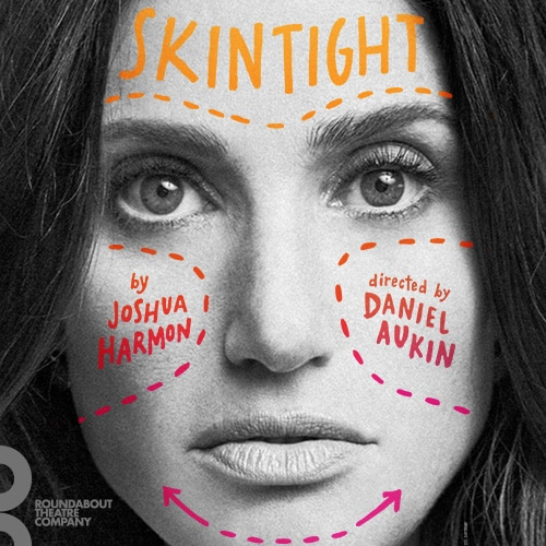Skintight Play Idina Menzel Off Broadway Show Tickets Group Sales